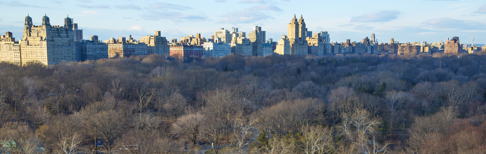 Skyline over Central Park in New York City